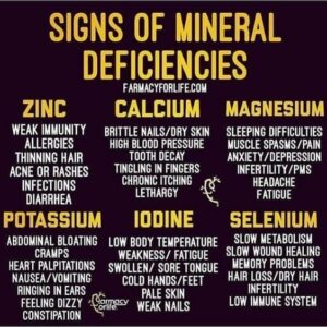 Minerals and the Body
