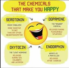 Dopamine 3137a53b7002427790243447d1051547