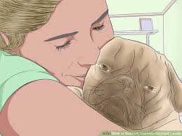 Oxytocin Pet