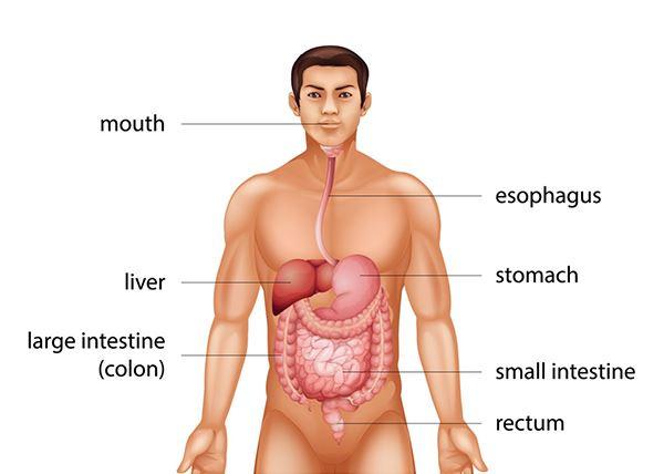 Colon Cancer 1