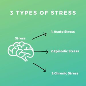 Stress: The Facts