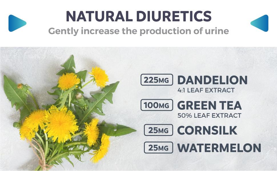 All about Diuretics - Natural Diuretics